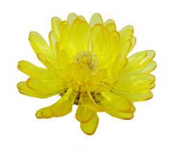 Gerbera, Yellow, Transparent 1113